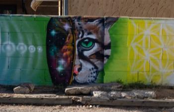 mural of cat galaxy